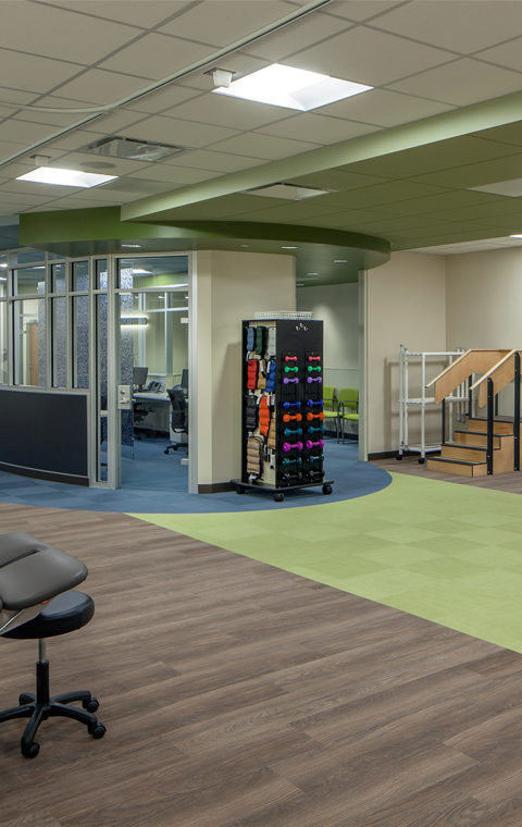 Physical Therapy Suite